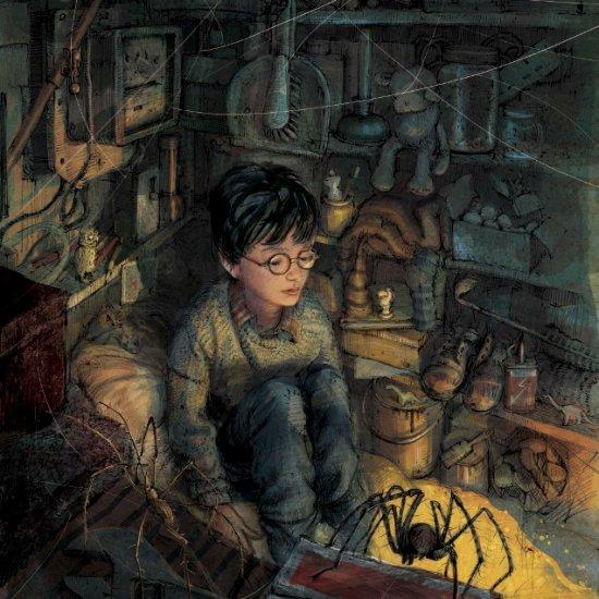 Harry-Potter-in-cupboard-Jim-Kay-RGB-636x800