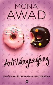 Antilányregény